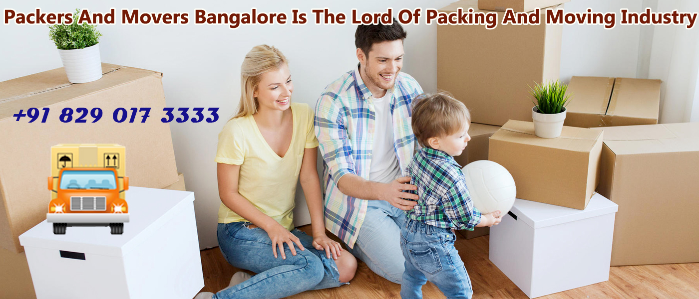 Top Packers And Movers Bangalore Reviews